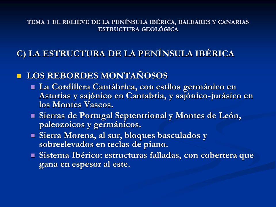 TEMA 1 EL RELIEVE DE LA PENÍNSULA IBÉRICA, BALEARES Y CANARIAS ESTRUCTURA GEOLÓGICA C) LA ESTRUCTURA DE LA PENÍNSULA IBÉRICA LOS REBORDES MONTAÑOSOS LOS REBORDES MONTAÑOSOS La Cordillera Cantábrica, con estilos germánico en Asturias y sajónico en Cantabria, y sajónico-jurásico en los Montes Vascos.