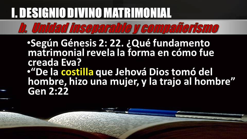 Según Génesis 2: 22. ¿Qué fundamento matrimonial revela la forma en cómo fue creada Eva? De la costilla que Jehová Dios tomó del hombre, hizo una muje