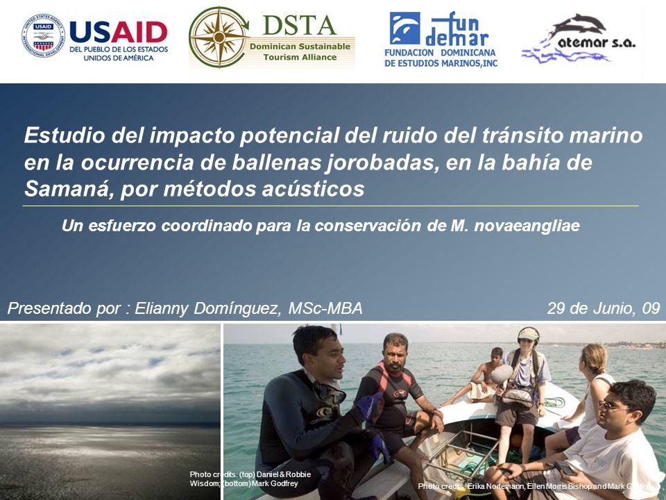 ESTRUCTURA DEL PROYECTO: Implementación: Fundemar y Atemar Colaboración Técnica: NOAA y Stellwagen National Sanctuary Financiamiento: USAID-DSTA y The Nature Conservancy (TNC)
