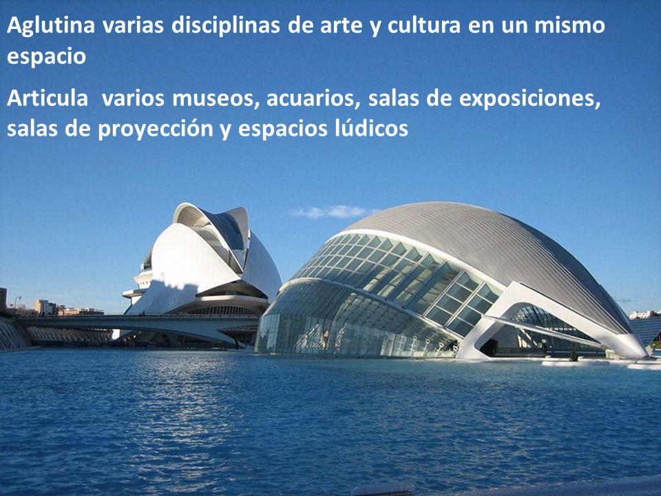 Aglutina varias disciplinas de arte y cultura en un mismo espacio Articula varios museos, acuarios, salas de exposiciones, salas de proyección y espac