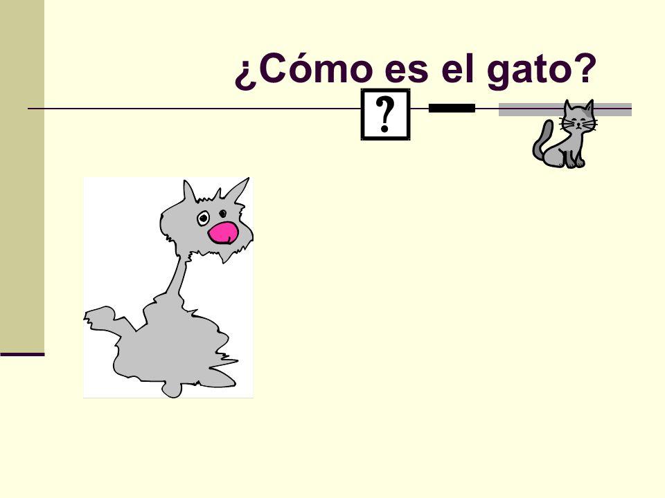 ¿Cómo es el gato?