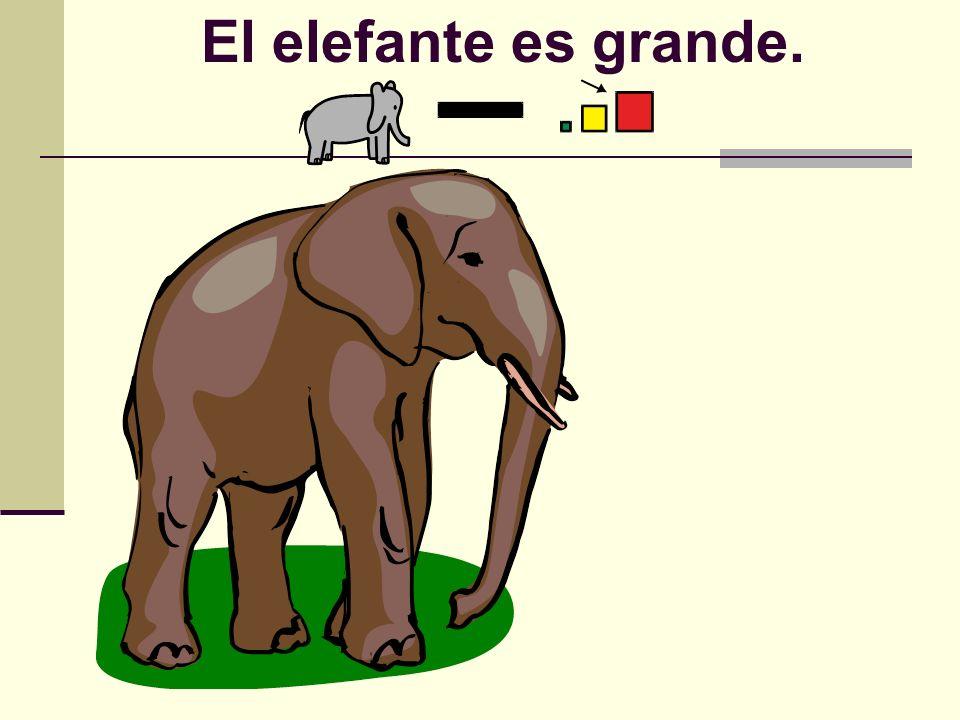 El elefante es grande.