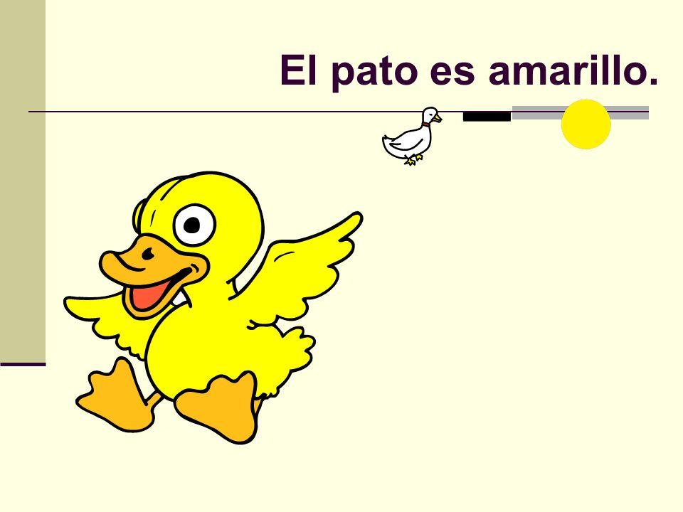El pato es amarillo.