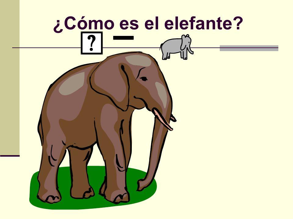 ¿Cómo es el elefante?