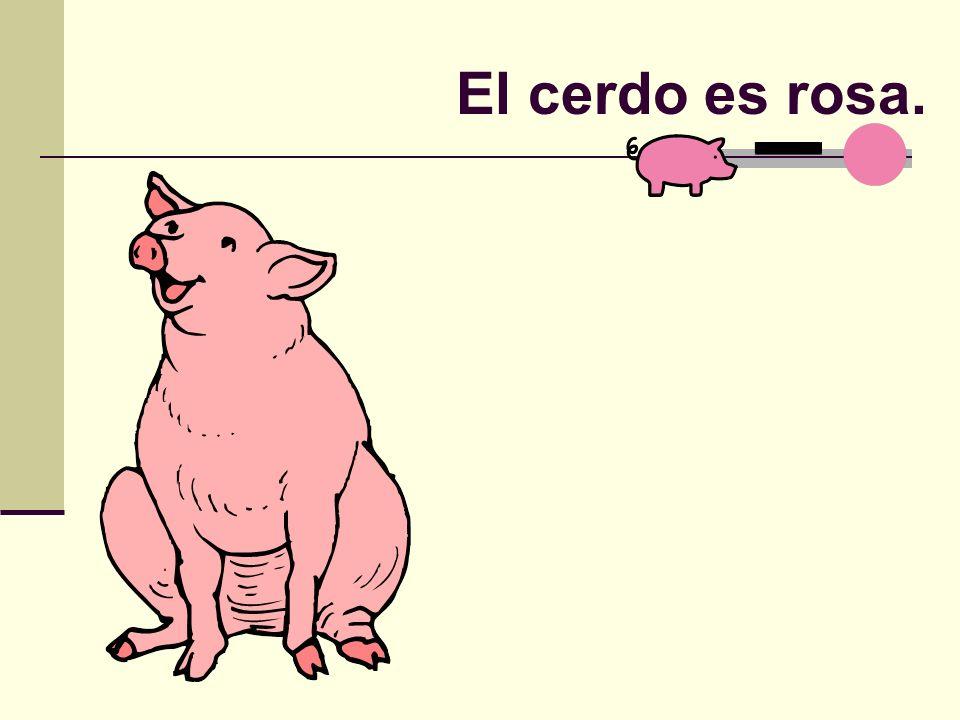 El cerdo es rosa.