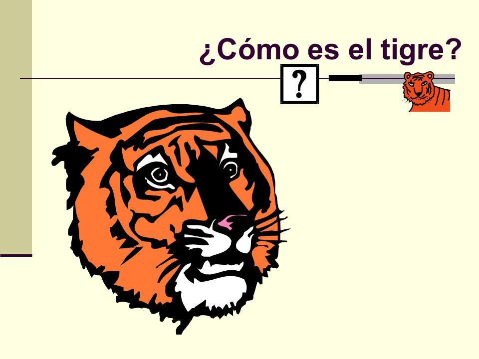 ¿Cómo es el tigre?
