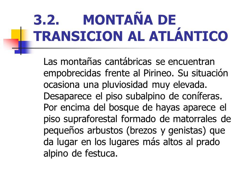 3.2.MONTAÑA DE TRANSICION AL ATLÁNTICO Las montañas cantábricas se encuentran empobrecidas frente al Pirineo. Su situación ocasiona una pluviosidad mu