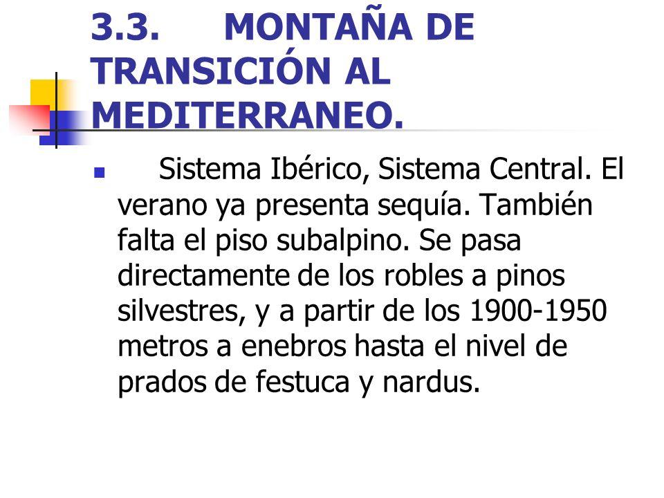 3.3.MONTAÑA DE TRANSICIÓN AL MEDITERRANEO. Sistema Ibérico, Sistema Central. El verano ya presenta sequía. También falta el piso subalpino. Se pasa di