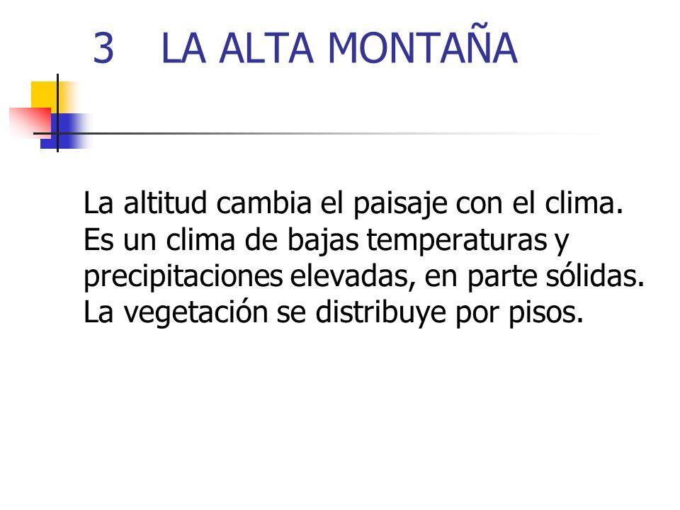 3LA ALTA MONTAÑA La altitud cambia el paisaje con el clima. Es un clima de bajas temperaturas y precipitaciones elevadas, en parte sólidas. La vegetac