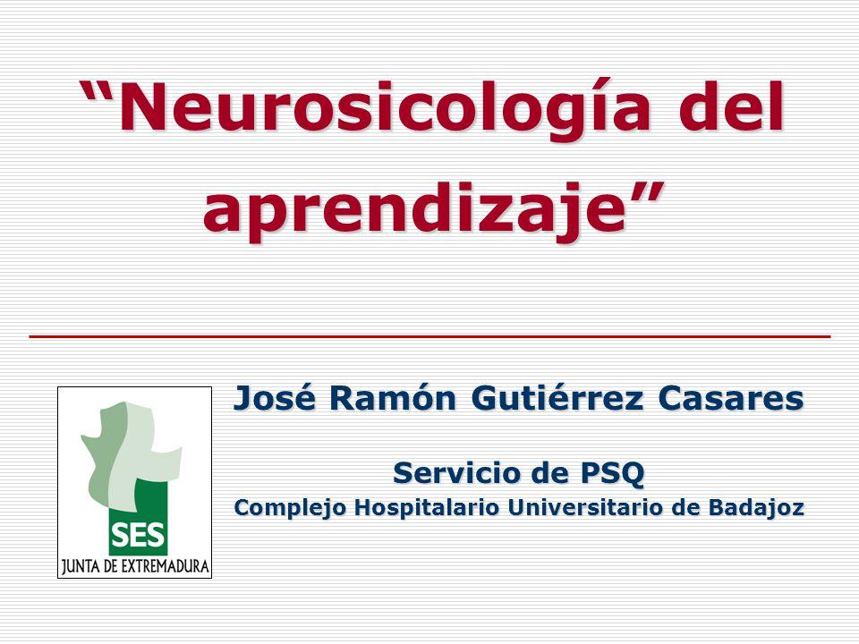 Neurosicología del aprendizaje José Ramón Gutiérrez Casares Servicio de PSQ Complejo Hospitalario Universitario de Badajoz