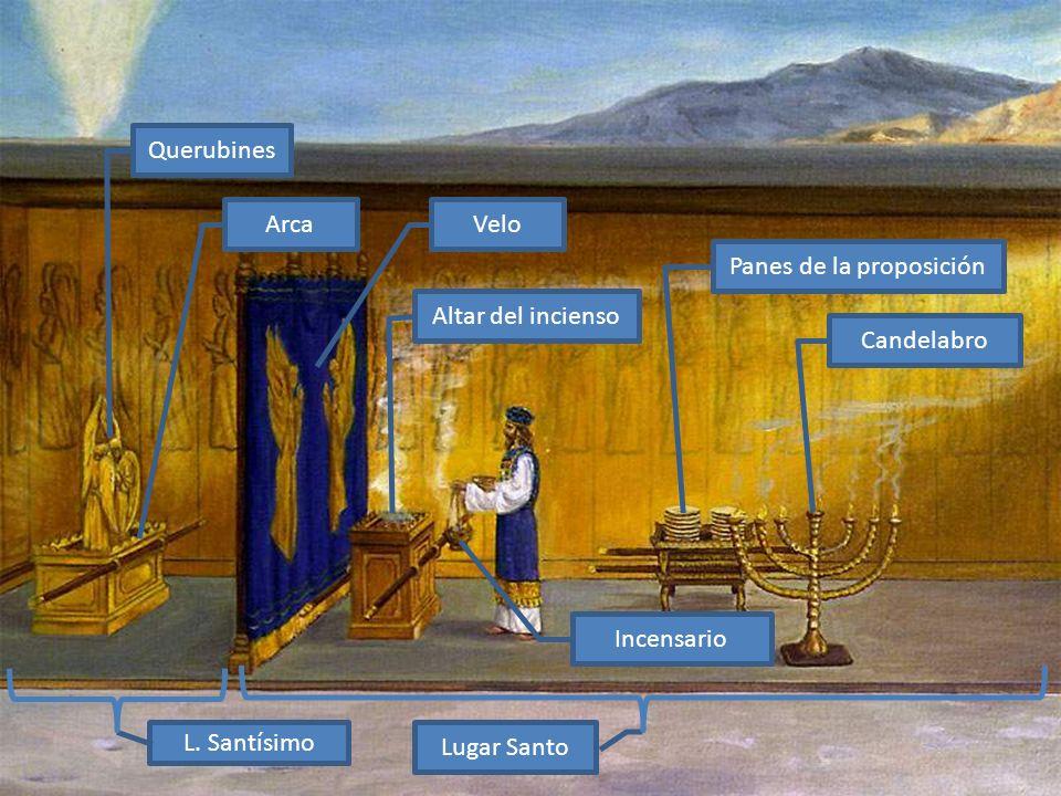 Lugar Santo L. Santísimo Candelabro Panes de la proposición Altar del incienso VeloArca Querubines Incensario