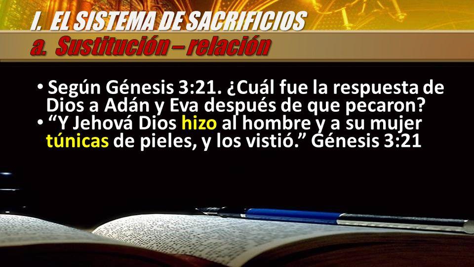 Según Génesis 3:21. ¿Cuál fue la respuesta de Dios a Adán y Eva después de que pecaron? Y Jehová Dios hizo al hombre y a su mujer túnicas de pieles, y