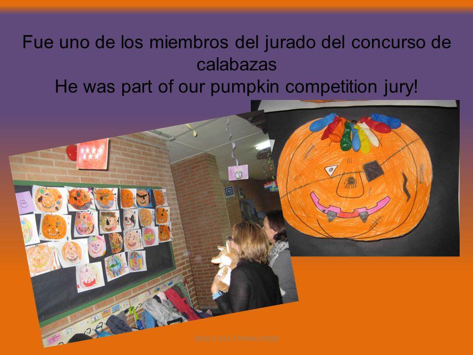 Fue uno de los miembros del jurado del concurso de calabazas He was part of our pumpkin competition jury.