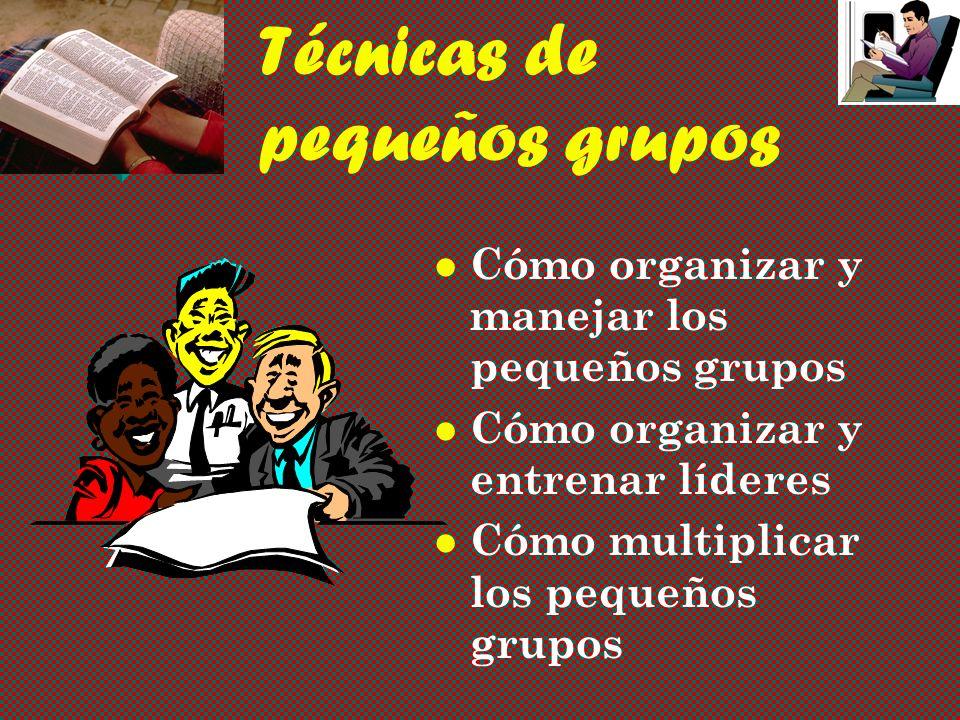 Técnicas de pequeños grupos Cómo organizar y manejar los pequeños grupos Cómo organizar y entrenar líderes Cómo multiplicar los pequeños grupos