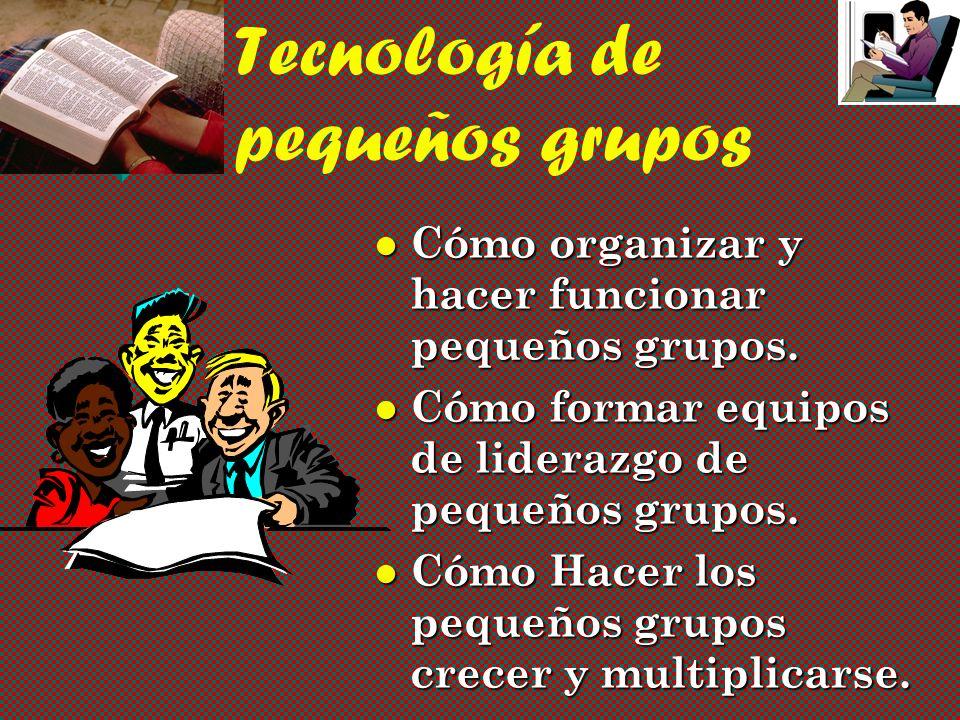 Tecnología de pequeños grupos Cómo organizar y hacer funcionar pequeños grupos.