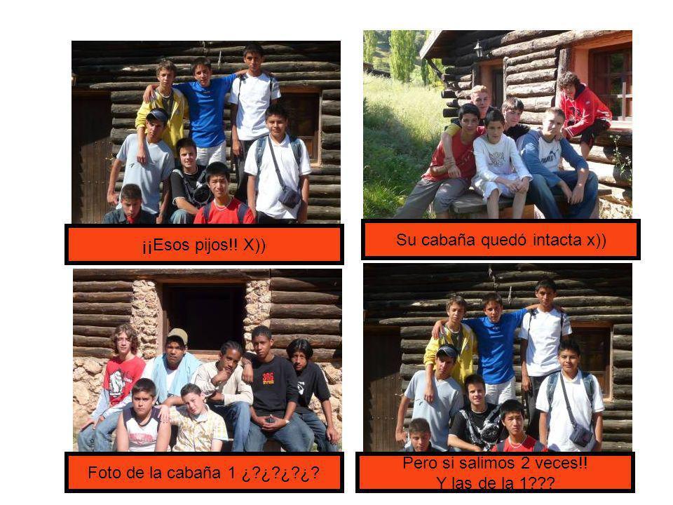 ¡¡Esos pijos!. X)) Su cabaña quedó intacta x)) Foto de la cabaña 1 ¿ ¿ ¿ ¿.