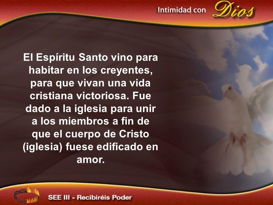 El Espíritu Santo vino para habitar en los creyentes, para que vivan una vida cristiana victoriosa.
