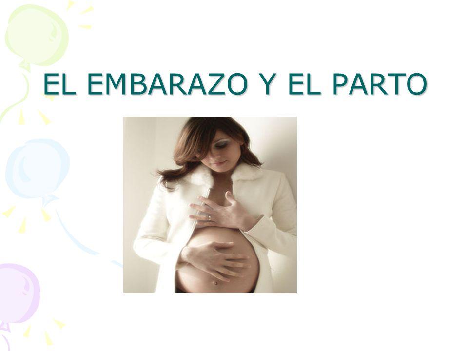 El Embarazo Es el periodo que transcurre entre la implantación en el útero del óvulo fecundado y el momento del parto.