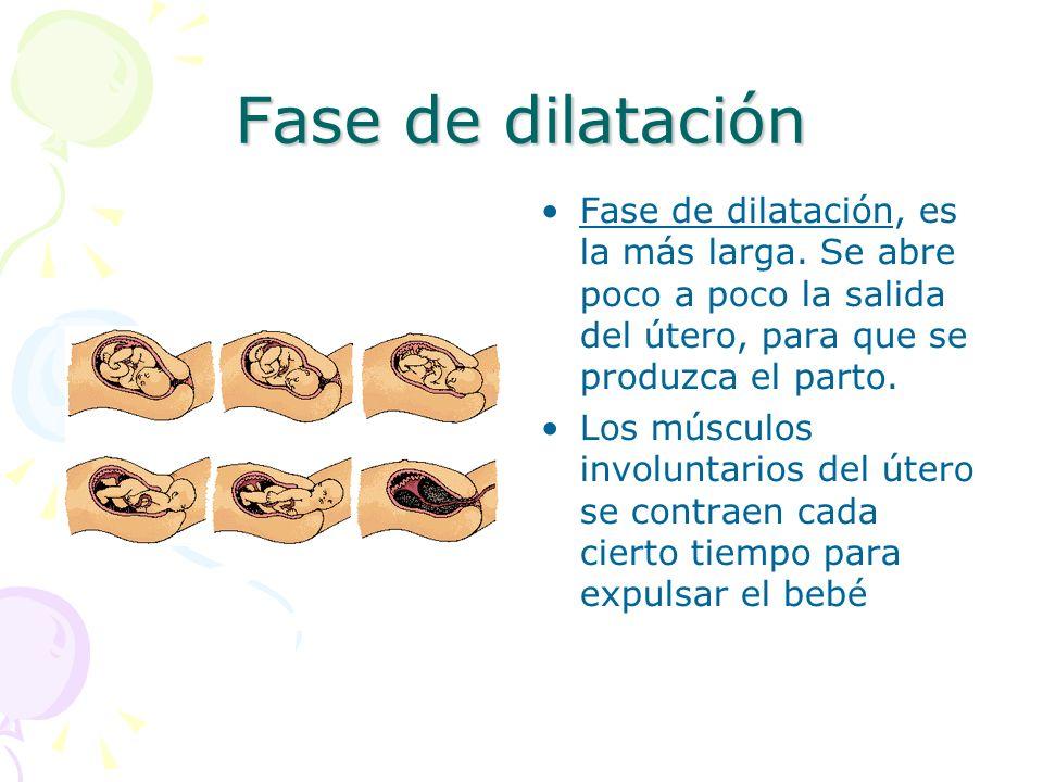 Fase de dilatación Fase de dilatación, es la más larga.