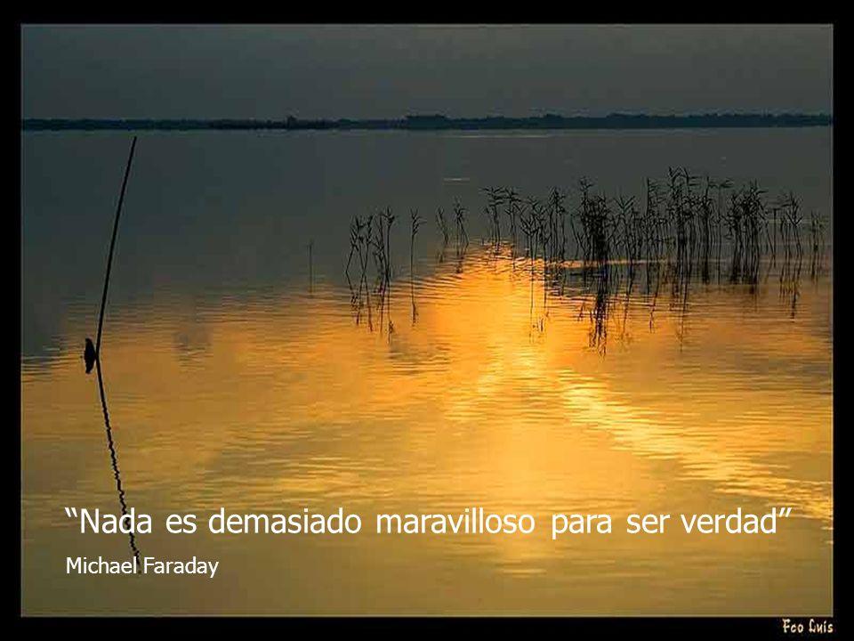 Nada es demasiado maravilloso para ser verdad Michael Faraday