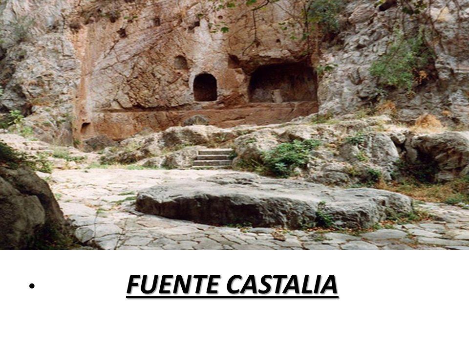 FUENTE CASTALIA