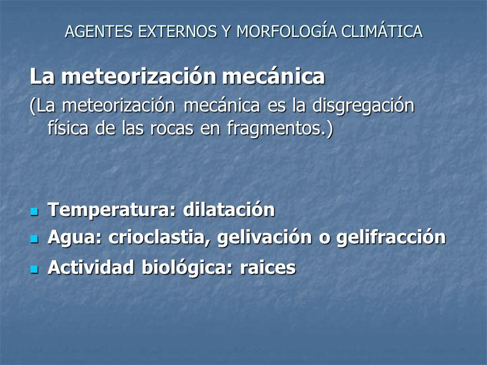 AGENTES EXTERNOS Y MORFOLOGÍA CLIMÁTICA La meteorización química (procesos producidos por el agua y gases de la atmósfera como el oxígeno y el dióxido de carbono.