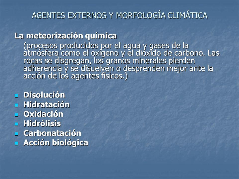 AGENTES EXTERNOS Y MORFOLOGÍA CLIMÁTICA Biostasia Resistasia