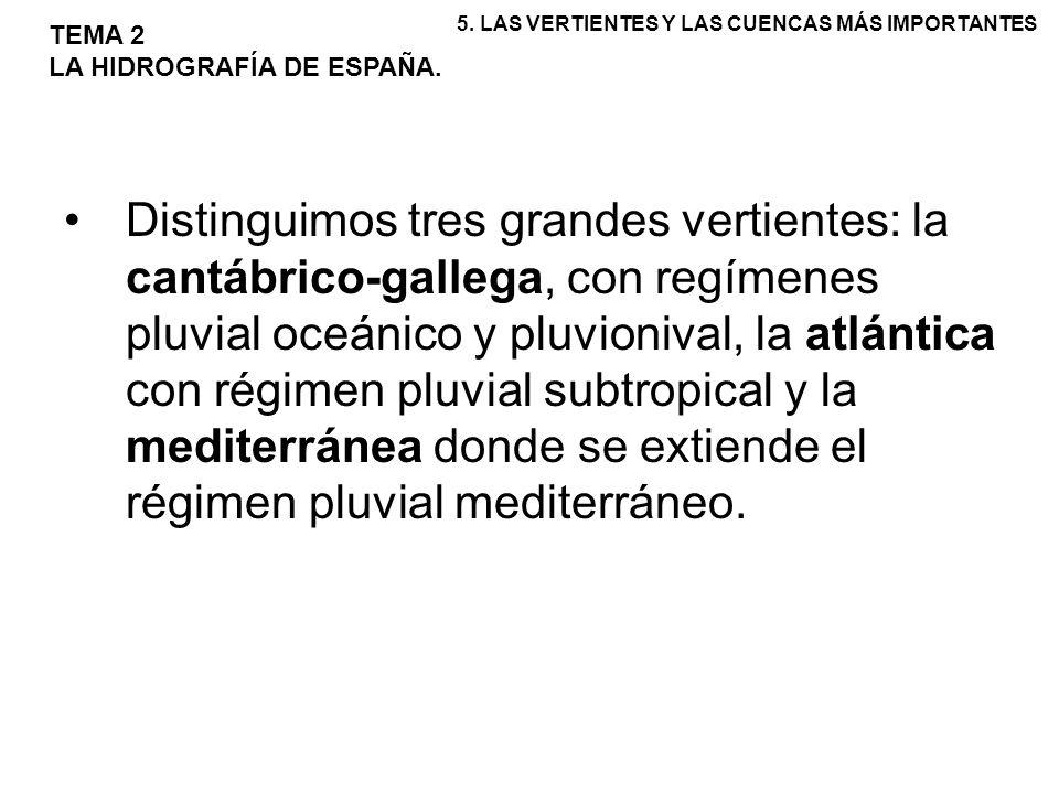 Distinguimos tres grandes vertientes: la cantábrico-gallega, con regímenes pluvial oceánico y pluvionival, la atlántica con régimen pluvial subtropica