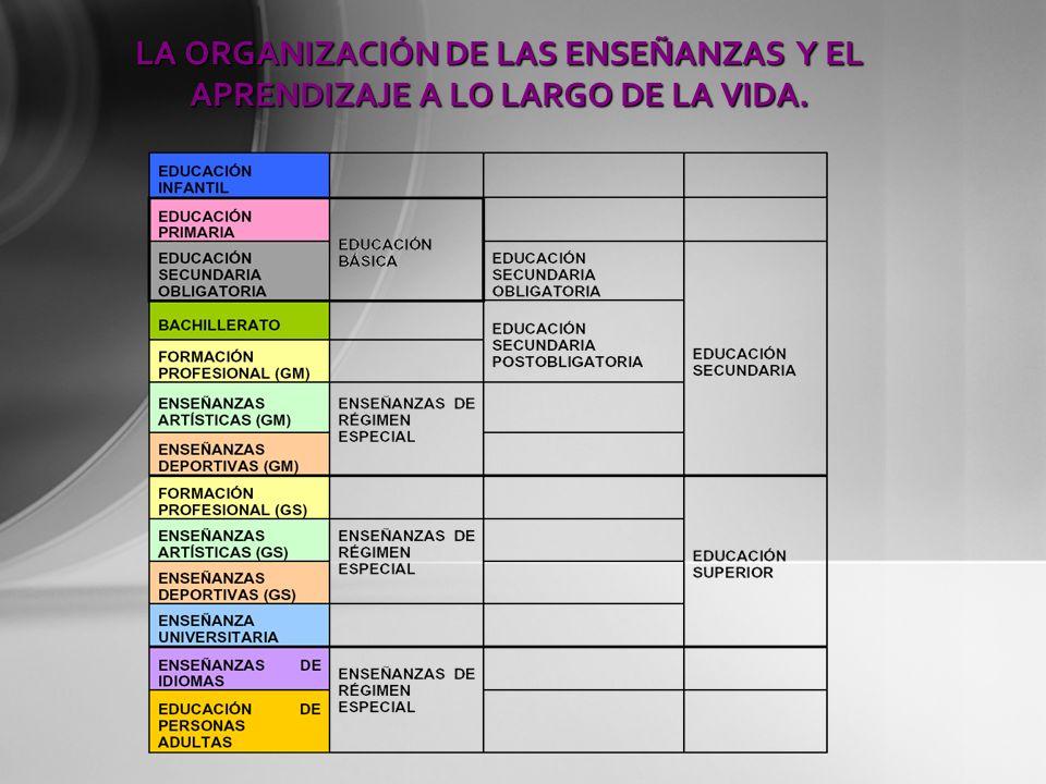 LA ORGANIZACIÓN DE LAS ENSEÑANZAS Y EL APRENDIZAJE A LO LARGO DE LA VIDA.
