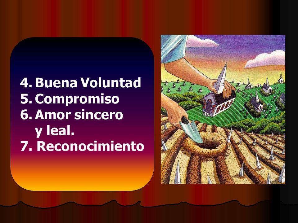 4.Buena Voluntad 5.Compromiso 6.Amor sincero y leal. 7. Reconocimiento