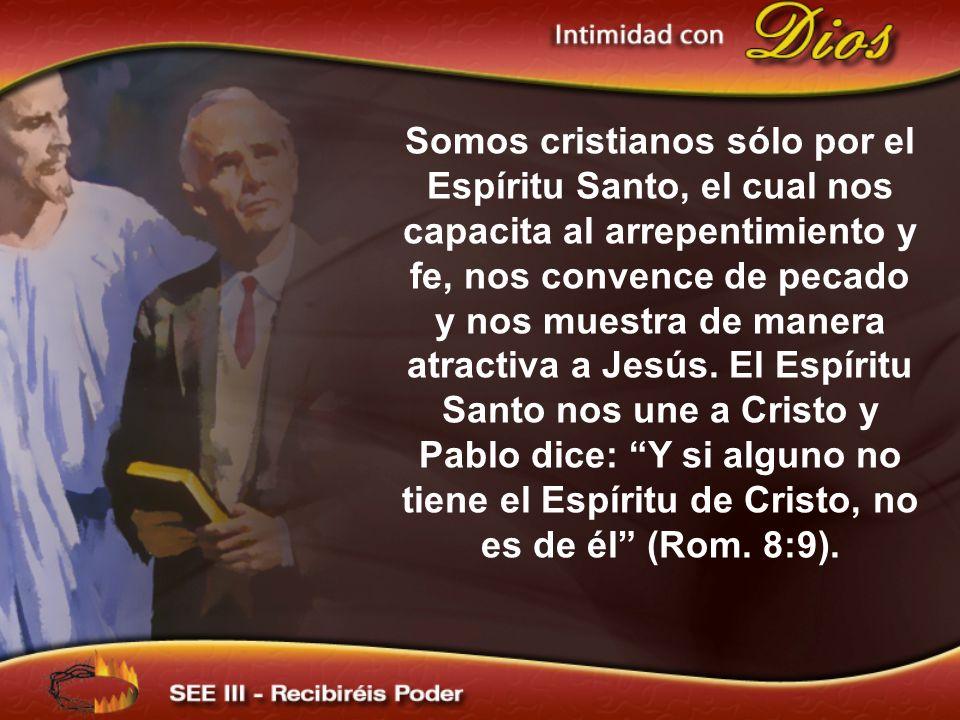 Somos cristianos sólo por el Espíritu Santo, el cual nos capacita al arrepentimiento y fe, nos convence de pecado y nos muestra de manera atractiva a