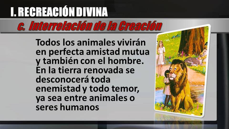 Todos los animales vivirán en perfecta amistad mutua y también con el hombre. En la tierra renovada se desconocerá toda enemistad y todo temor, ya sea