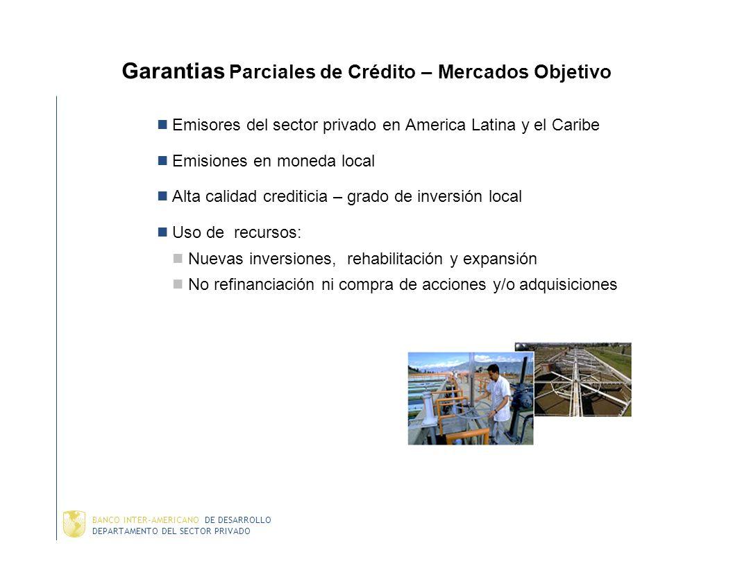 DEPARTAMENTO DEL SECTOR PRIVADO BANCO INTER-AMERICANO DE DESARROLLO Papel del BID en el nuevo paradigma Apoyar emisiones en los mercados locales de ca