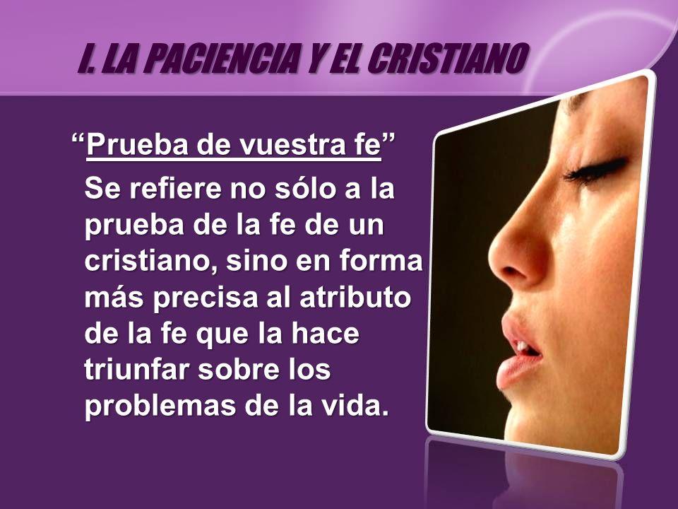 Prueba de vuestra fePrueba de vuestra fe Se refiere no sólo a la prueba de la fe de un cristiano, sino en forma más precisa al atributo de la fe que l