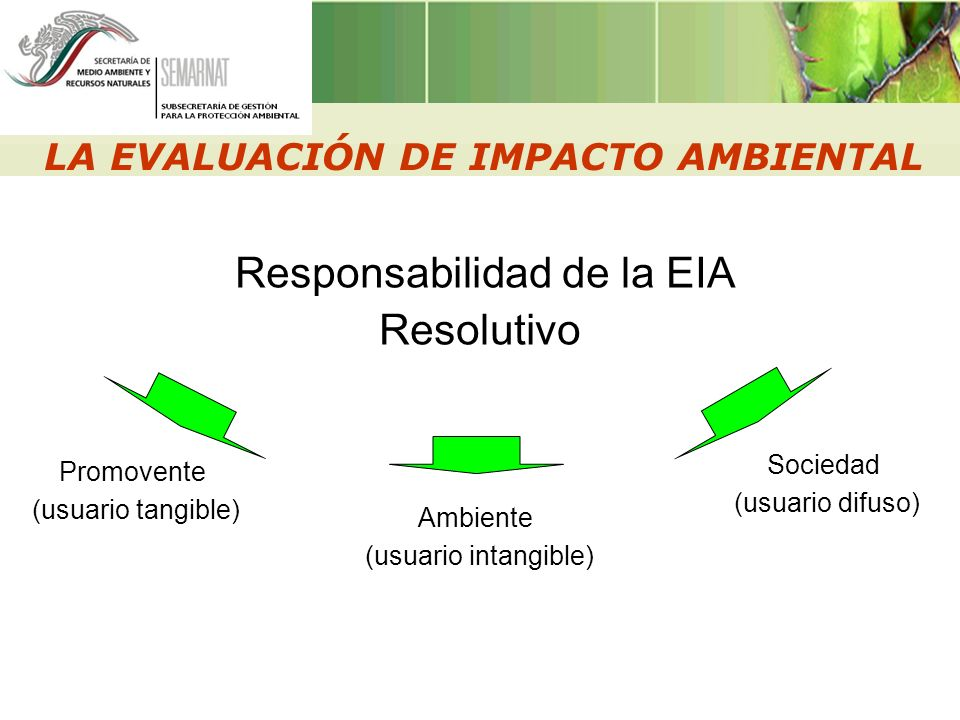 LA EVALUACIÓN DE IMPACTO AMBIENTAL Responsabilidad de la EIA Resolutivo Promovente (usuario tangible) Ambiente (usuario intangible) Sociedad (usuario