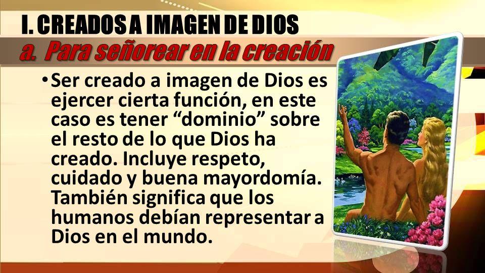 Ser creado a imagen de Dios es ejercer cierta función, en este caso es tener dominio sobre el resto de lo que Dios ha creado. Incluye respeto, cuidado