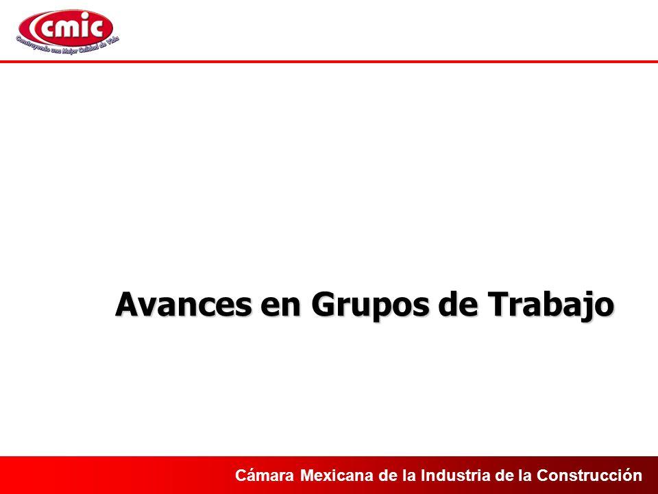 Cámara Mexicana de la Industria de la Construcción Avances en Grupos de Trabajo
