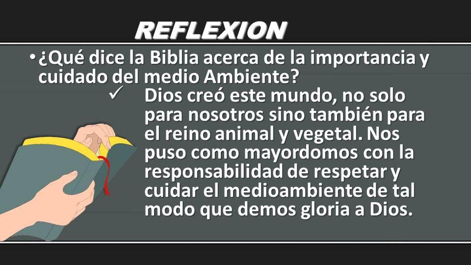 REFLEXION ¿Qué dice la Biblia acerca de la importancia y cuidado del medio Ambiente? ¿Qué dice la Biblia acerca de la importancia y cuidado del medio