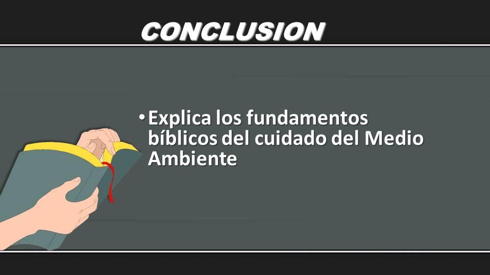 CONCLUSION Explica los fundamentos bíblicos del cuidado del Medio Ambiente Explica los fundamentos bíblicos del cuidado del Medio Ambiente