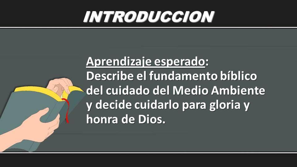 INTRODUCCION Aprendizaje esperado: Describe el fundamento bíblico del cuidado del Medio Ambiente y decide cuidarlo para gloria y honra de Dios.