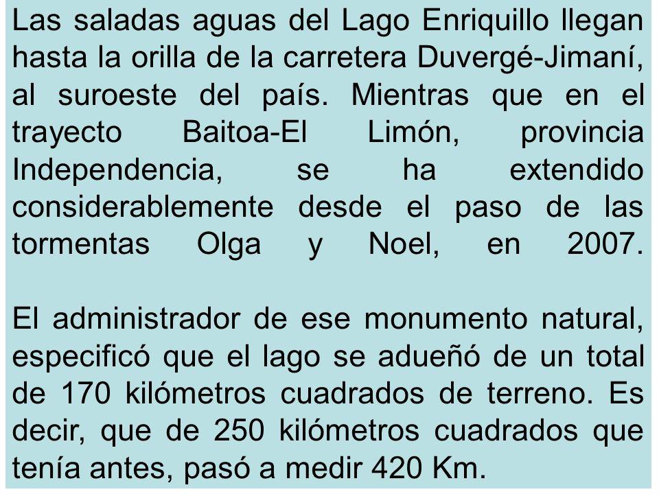 Las saladas aguas del Lago Enriquillo llegan hasta la orilla de la carretera Duvergé-Jimaní, al suroeste del país.