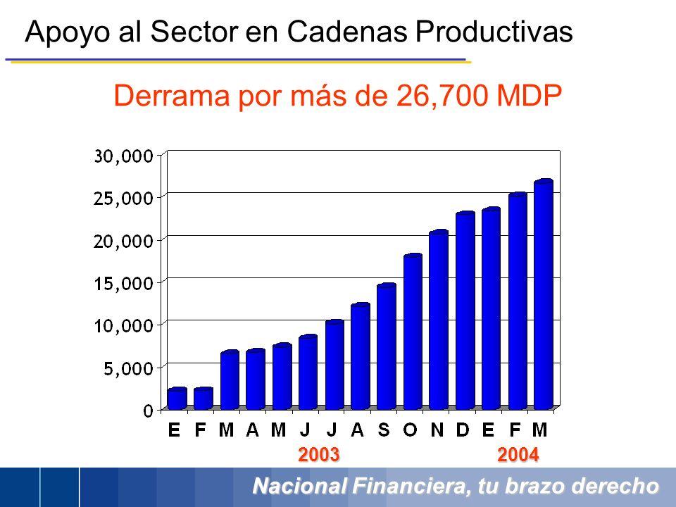 Nacional Financiera, tu brazo derecho Apoyo al Sector en Cadenas Productivas 2003 2004 Derrama por más de 26,700 MDP
