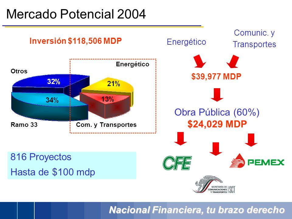 Nacional Financiera, tu brazo derecho Inversión $118,506 MDP Mercado Potencial 2004 Obra Pública (60%) $24,029 MDP Energético Com. y Transportes Ramo