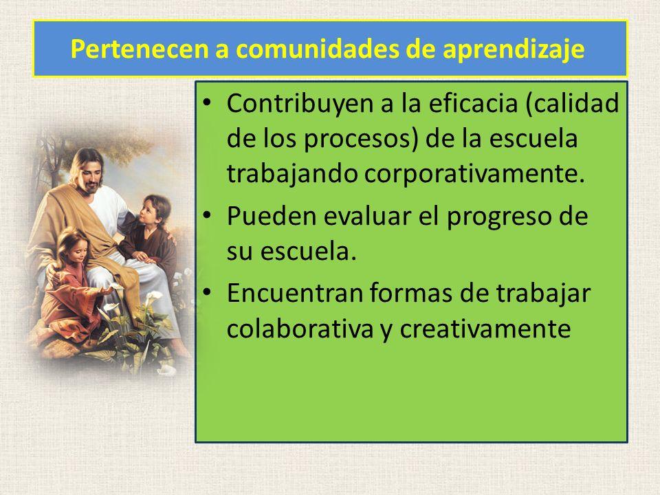Pertenecen a comunidades de aprendizaje Contribuyen a la eficacia (calidad de los procesos) de la escuela trabajando corporativamente. Pueden evaluar