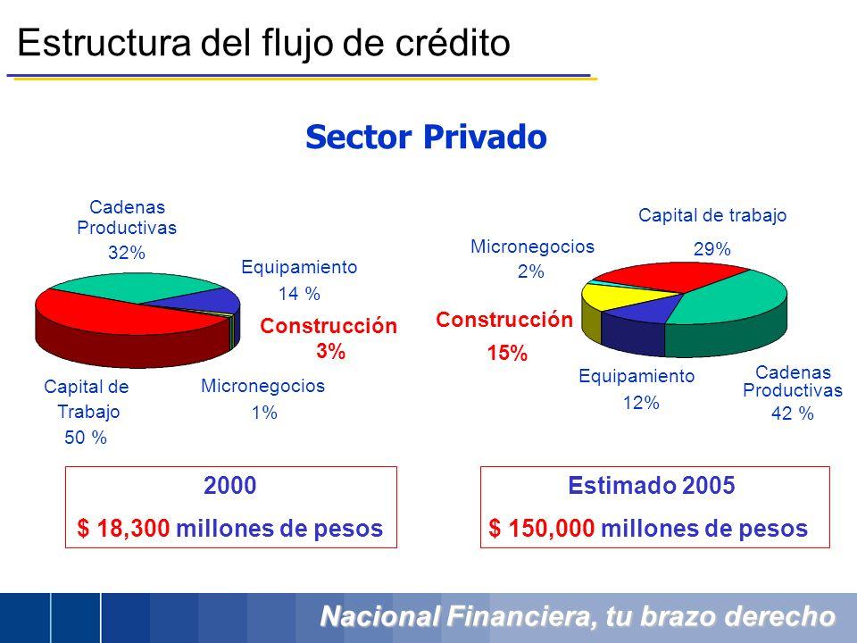 Nacional Financiera, tu brazo derecho Estructura del flujo de crédito Sector Privado Cadenas Productivas 42 % Equipamiento 12% Construcción 15% Micron