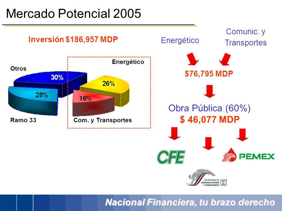 Nacional Financiera, tu brazo derecho Inversión $186,957 MDP Mercado Potencial 2005 Obra Pública (60%) $ 46,077 MDP Energético Com. y Transportes Ramo