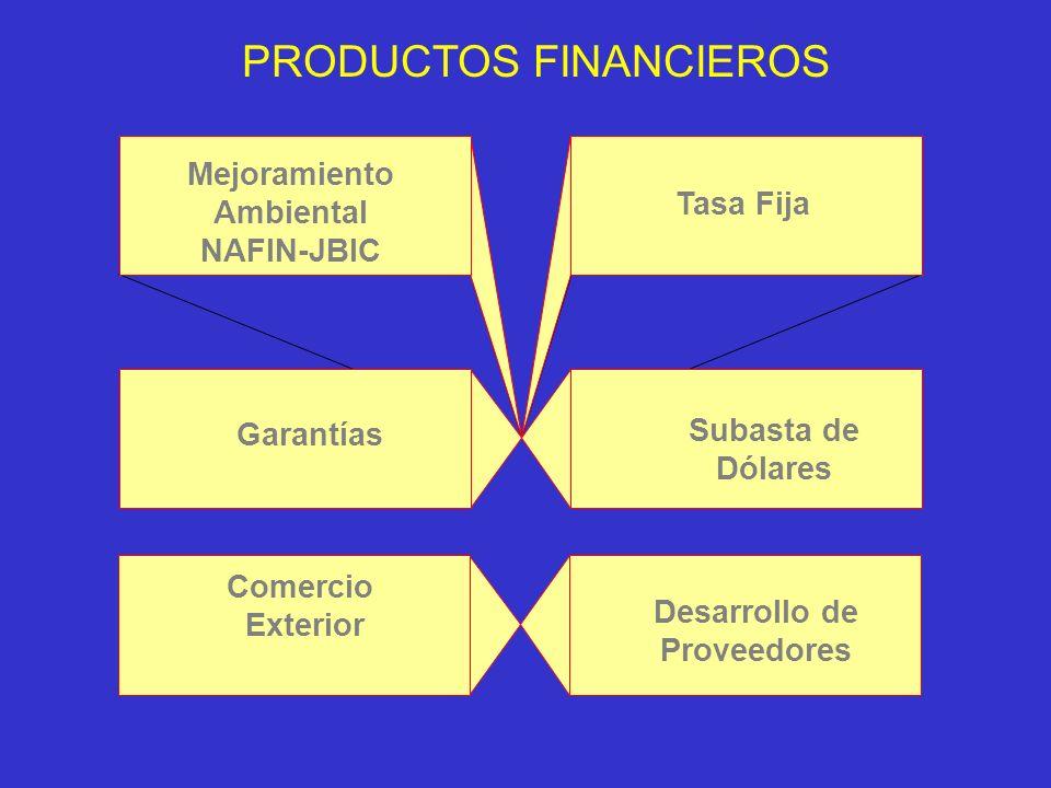 Capital de Trabajo.Adquisición de Activos Fijos. Proyectos de Mejoramiento Ambiental.