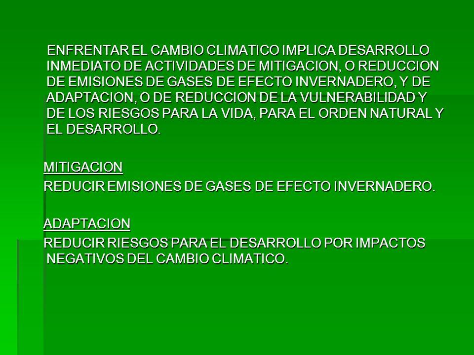 LOS ESFUERZOS INTERNACIONALES PARA COMBATIR LOS EFECTOS DEL CAMBIO CLIMATICO SE ENFOCAN A LA ESTABILIZACION Y POSTERIOR DISMINUCION DE LOS GASES DE EFECTO INVERNADERO, CON EL PROPOSITO DE DEJAR QUE LOS ECOSISTEMAS SE ADAPTEN NATURALMENTE AL CAMBIO CLIMATICO AL MENOR COSTO, TOMANDO EN CUENTA LAS RESPONSABILIDADES COMUNES PERO DIFERENCIADAS Y RESPECTIVAS CAPACIDADES DE LOS PAISES.