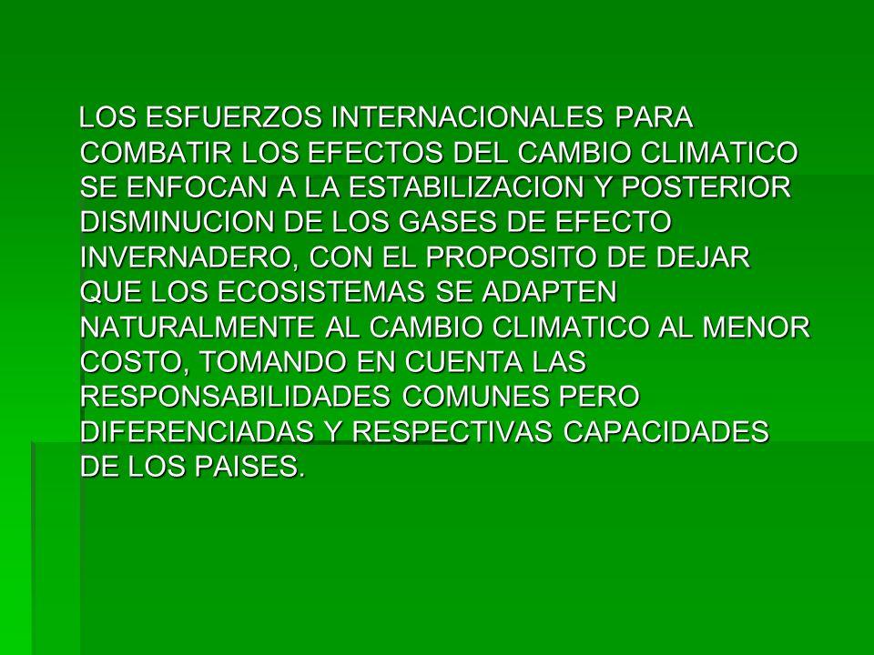 LOS ESFUERZOS INTERNACIONALES PARA COMBATIR LOS EFECTOS DEL CAMBIO CLIMATICO SE ENFOCAN A LA ESTABILIZACION Y POSTERIOR DISMINUCION DE LOS GASES DE EF