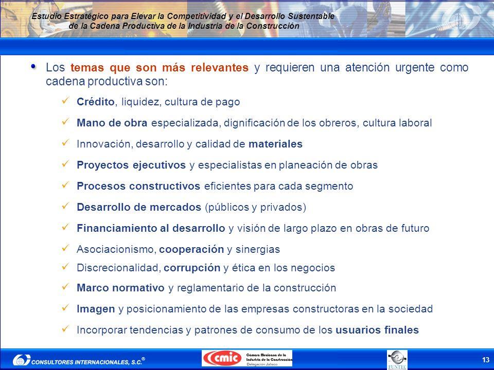 13 Estudio Estratégico para Elevar la Competitividad y el Desarrollo Sustentable de la Cadena Productiva de la Industria de la Construcción Los temas